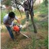 厂家直销新款立盈小型手持式 挖树机