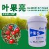 叶果亮水溶肥桶肥 花果肥料叶面肥 氨基酸水溶性肥料