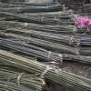 厂家出售各类1.5米2米2.2米菜架竿2.5米3米菜架竿批发