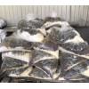 批发供应无锡橡胶混练用低熔点投料袋,低熔点塑料袋