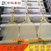 广西玉势自动双线腐竹机生产线 大型腐竹设备 腐竹加工机器多少钱