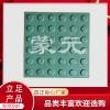 不锈钢盲道条 导盲条 不锈钢盲人SB-9(墨绿色)塑胶盲道板