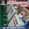 防爆配电箱具有过载 断路保护功能防爆配电箱