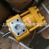 折弯机专用液压油泵 NT4-G50F内啮合齿轮泵