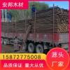 杉木杆杉木 原产地批发 好货源 好品质 欢迎来电洽谈