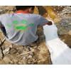 惠州厂房漏水找专业防水补漏公司有哪些