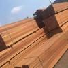 南美菠萝格实木地板-防腐防潮防蚁